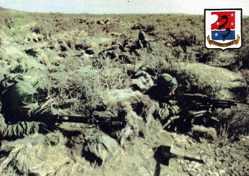 Batallon de infanteria de Marina 5
