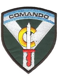 Compania de Comandos 601